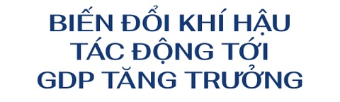 Giam doc WB: 'Se khong the co cong nghiep 4.0 voi mot bo may 1.0' hinh anh 3