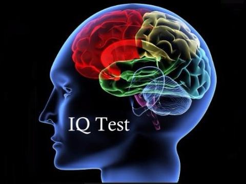 Trac nghiem do IQ, chi thien tai moi gianh diem tuyet doi hinh anh