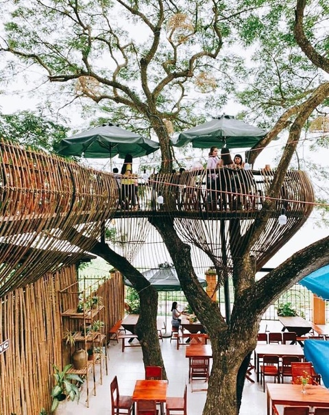 Quán cà phê mát rượi, lơ lửng trên cây ở Cần Thơ thu hút giới trẻ