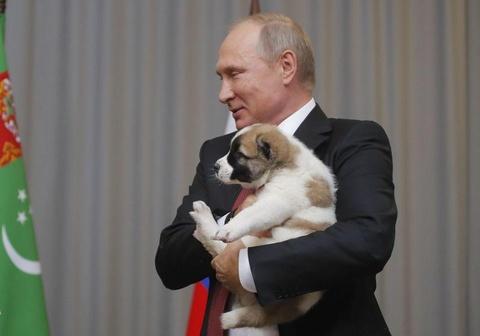 Tong thong Putin duoc tang cho nhan dip sinh nhat hinh anh