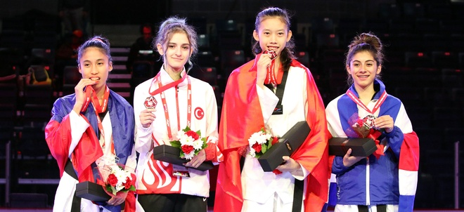 Viet Nam doat HCV taekwondo tre the gioi sau 8 nam hinh anh