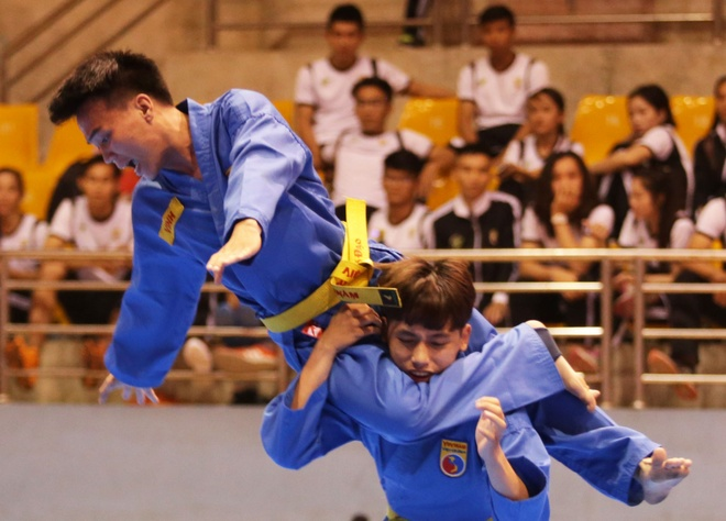 Vovinam day manh cac hoat dong quoc te hinh anh