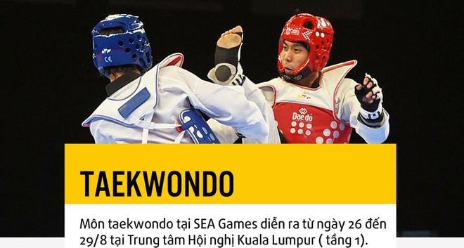 Cho taekwondo Viet Nam the hien dang cap o SEA Games hinh anh 1