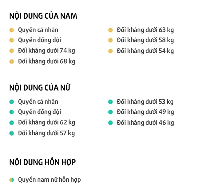 Cho taekwondo Viet Nam the hien dang cap o SEA Games hinh anh 2