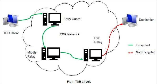 Darknet: Duoi day tang bang cua mang Internet hinh anh 2