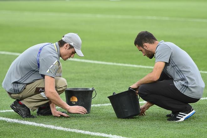 Mat san cua Euro 2016 la tham hoa hinh anh