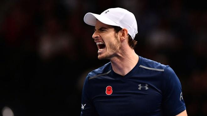 Soan ngoi Djokovic, Murray gianh vi tri so 1 the gioi hinh anh 1
