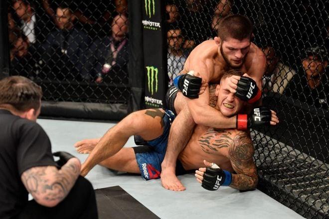 Khabib giau to sau khi vo dich hang nhe UFC hinh anh 1