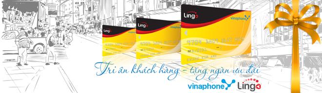 Qua tang hap dan tu Vinaphone-Lingo nhan dip 20/10 hinh anh 1