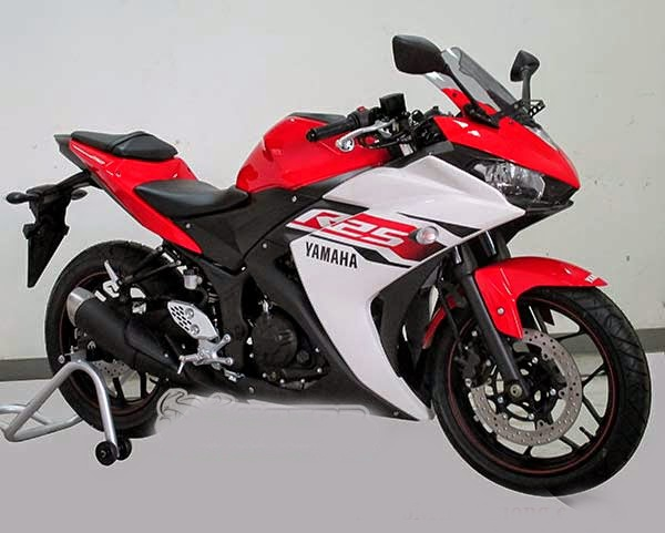 Yamaha YZF R25 2014 mau doc 'gay bao' tai Ha Noi hinh anh