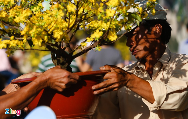 Ban thao, dap be hoa chieu 29 Tet o Sai Gon hinh anh 2