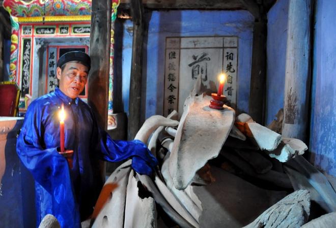 'Bao tang' xuong ca voi o dao Ly Son hinh anh
