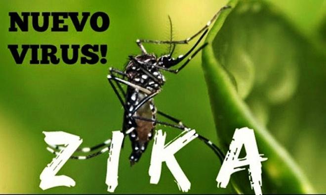 Khanh Hoa bac thong tin 4 nguoi duong tinh voi virus Zika hinh anh 1