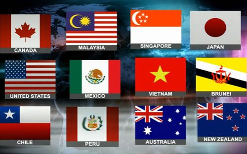 WB noi ve loi the 'khong nuoc nao co' cua Viet Nam trong TPP hinh anh 1 12 thành viên trong hiệp định TPP.