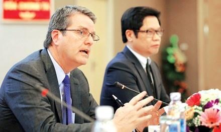 Tong giam doc WTO: Con ngong ngoi yen se bi bat hinh anh