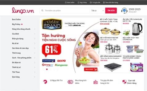 Website Lingo.vn dong cua: Ket cuc cua ke dot tien hinh anh 1