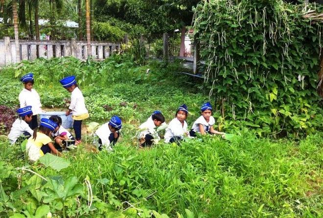 Nong trai vui cua thay tro hinh anh 1 Nông trại vừa giúp cải thiện bữa ăn vừa là nơi dạy cho các em những kỹ năng sống - Ảnh: Trần Mai.