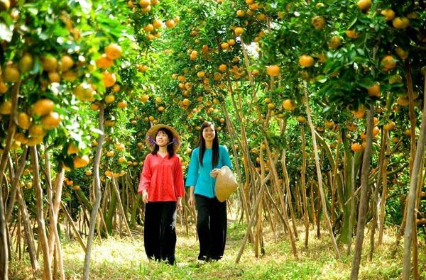 Vườn cây ăn trái là điểm tham quan thu hút của miền Tây.