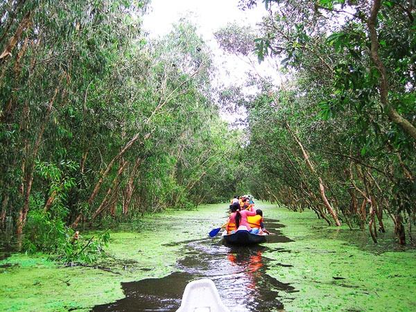 Chèo xuống ngắm sông nước là hoạt động yêu thích của du khách.