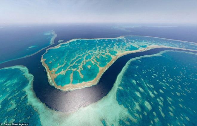 Rạn san hô Great Barrier ở Australia.