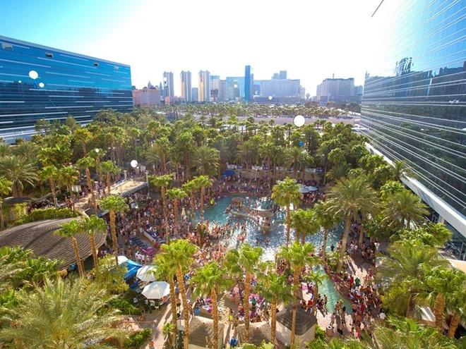 Hồ bơi tuyệt vời tại Hard Rock ở Las Vegas lúc nào cũng rất đông người. Dù đây là một bể bơi đẹp nổi tiếng thế giới nhưng nó phù hợp để tổ chức những bữa tiệc (Pool Party) hơn là để bơi.