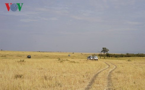 Du lich Kenya: Di xem su tu san moi hinh anh 2