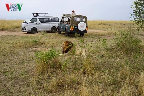 Du lich Kenya: Di xem su tu san moi hinh anh