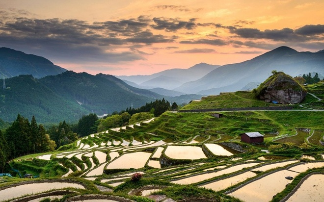 Mặc dù ruộng bậc thang phổ biến hơn ở các nước Đông Nam Á như Việt Nam hay Indonesia nhưng chúng cũng có ở Nhật Bản. Một chuyến đi tới làng quê, đạp xe hay đi bộ qua các ruộng lúa đều rất tuyệt. Mùa thu cũng là mùa thu hoạch với những bông lúa chín vàng. Vào mùa hè, những bông lúa xanh tươi, mùa đông thường bị tuyết bao phủ và mùa xuân là thời điểm mà cả cánh đồng ngập trong nước.