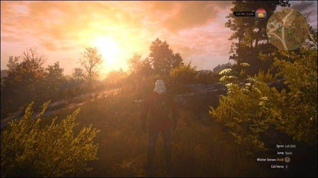 The Witcher 3 không được bản vệ bằng bất kì biện pháp nào. Ảnh: Howtogeek.