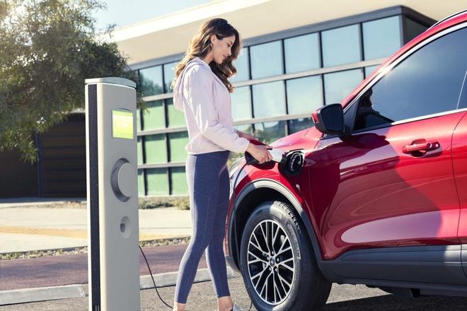 Ford Escape 2020 ra mat, doi thu cua Honda CR-V va Toyota RAV4 hinh anh 1