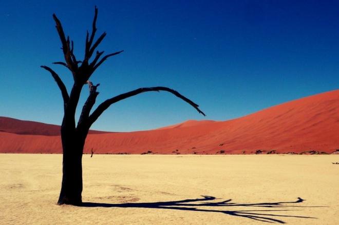 Nhung vung sa mac dep me hon hinh anh 1 Sa mạc Namib, Namibia.