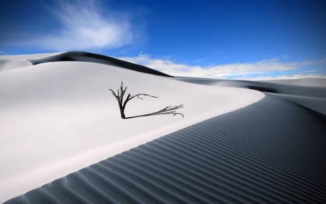 Nhung vung sa mac dep me hon hinh anh 4 Sa mạc trắng, New Mexico, Hoa Kỳ.