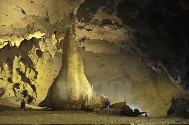 Các cột thạch nhũ lấp lánh ánh vàng cao như một tòa nhà nằm trong lòng hang rộng, cách cửa hang chừng 400m. (Ảnh: Minh Đức/TTXVN)