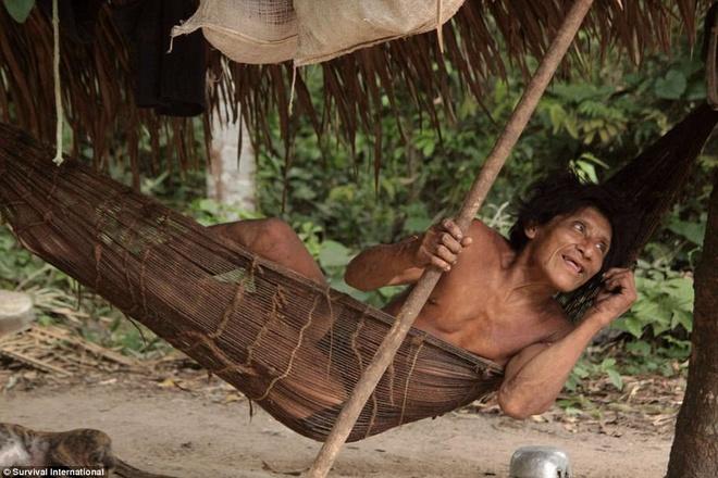 Bo toc ky la o Amazon nhan dong vat hoang da lam con hinh anh 13