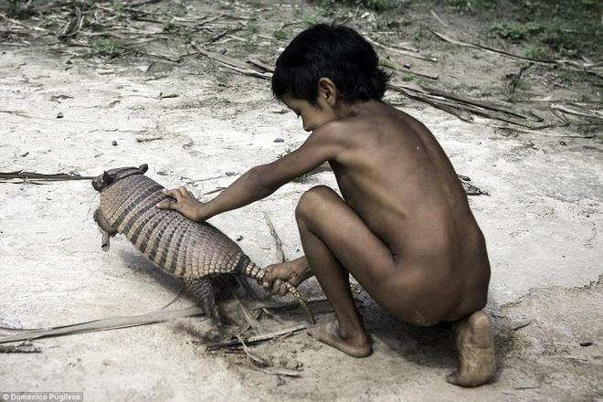 Bo toc ky la o Amazon nhan dong vat hoang da lam con hinh anh 3 Nhiếp ảnh gia Domenico Pugliese là một trong số ít những người may mắn có cơ hội tiếp xúc với bộ lạc Awa. (Nguồn: Dailymail)