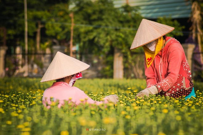 Nhung mau hoa tren duong phuot mua thu hinh anh 14