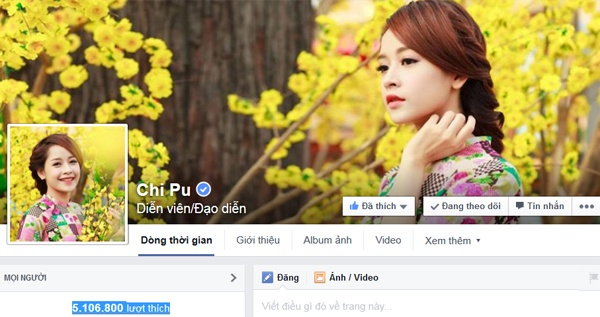 8 sao Viet co luong fan theo doi nhieu nhat tren Facebook hinh anh 16