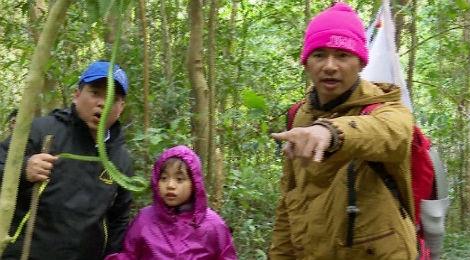 Bo con Xuan Bac, Manh Truong chinh phuc dinh Langbiang hinh anh