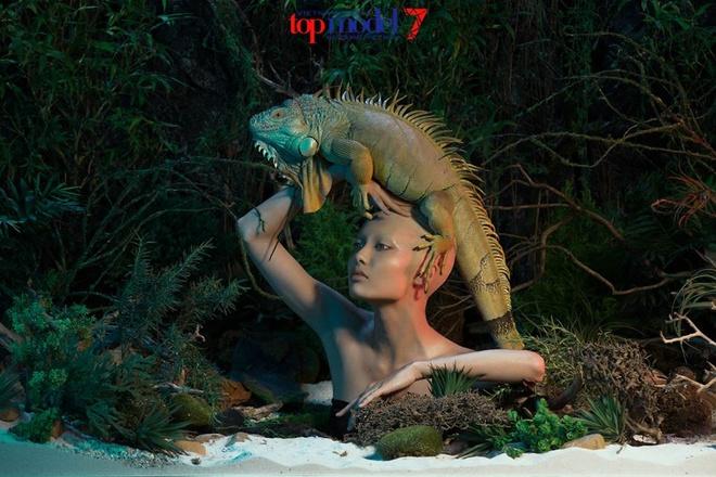 Thanh Hang bi chi trich khong cong tam o Next Top Model hinh anh 1