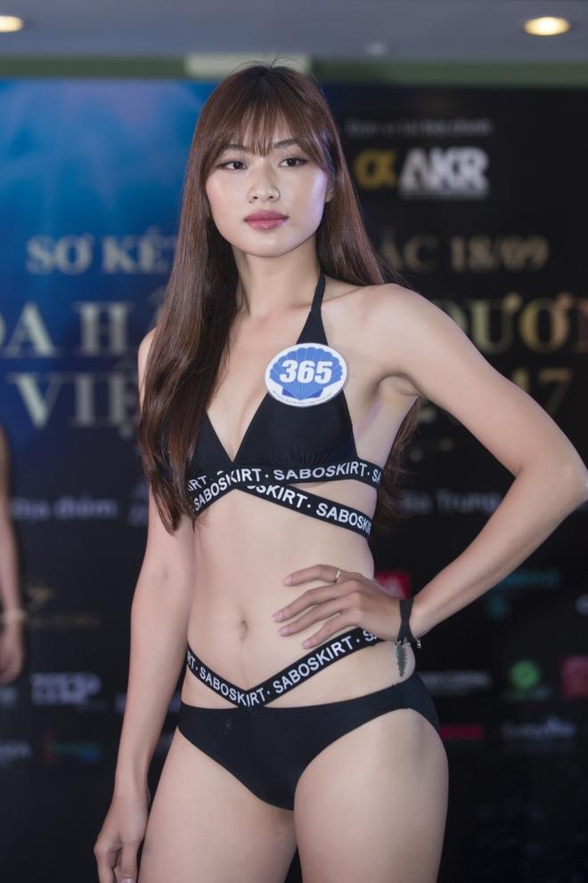 Hoa hau Dai duong 2017 anh 7