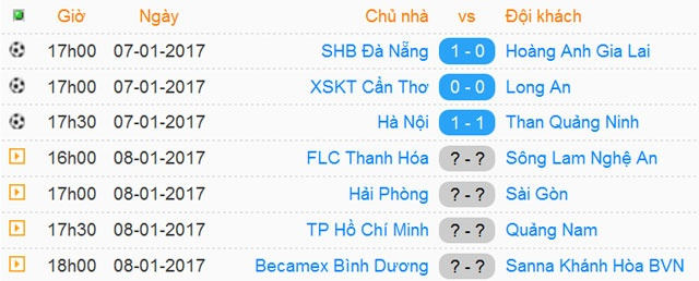 Tran Da Nang vs HAGL anh 19