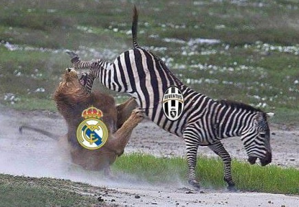 Anh vui Juve bien Real thanh cuu vo dich Champions League hinh anh