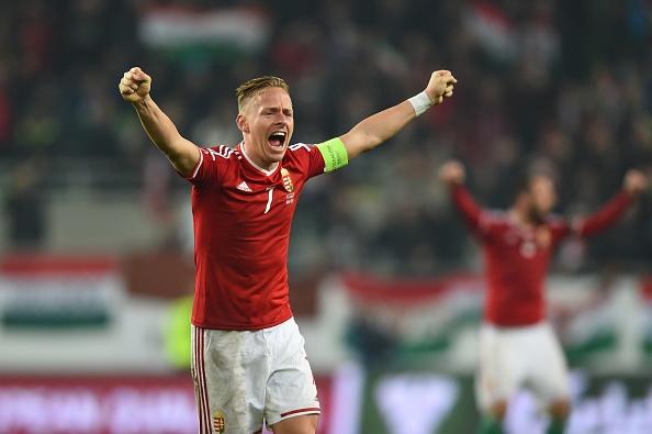Danh bai Na Uy, Hungary doat ve du vong chung ket EURO 2016 hinh anh 5