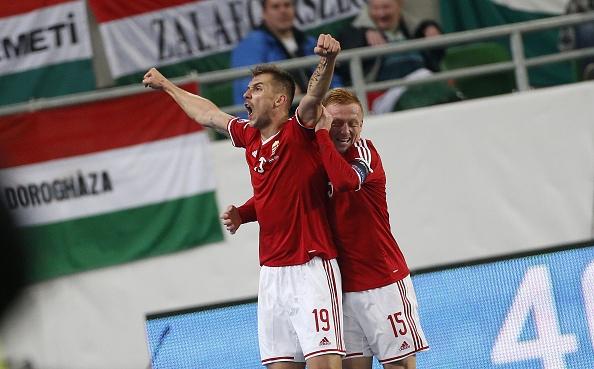 Danh bai Na Uy, Hungary doat ve du vong chung ket EURO 2016 hinh anh 6