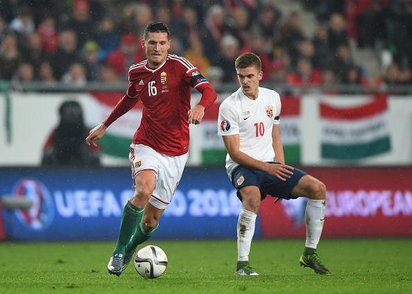 Danh bai Na Uy, Hungary doat ve du vong chung ket EURO 2016 hinh anh 7
