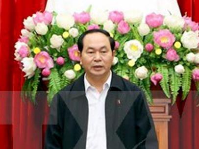 Chu tich nuoc: Truy bat khan toi pham tron o nuoc ngoai hinh anh