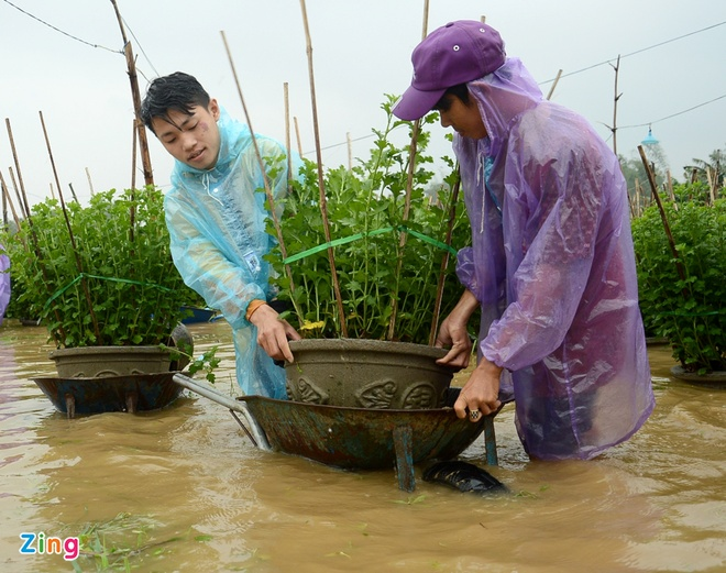 Dan Quang Ngai o at cho cuc Tet chay lu hinh anh 2