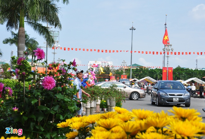 Da Nang, Quang Ngai keu goi cong chuc 'giai cuu' hoa Tet hinh anh 2