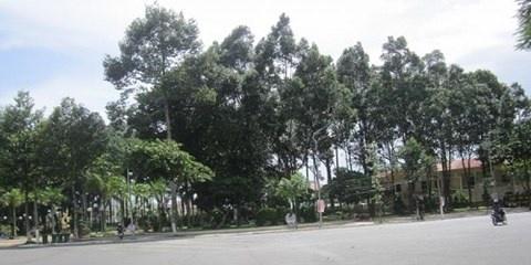 Công viên Long Xuyên nơi hai nghệ sỹ thỏa thuận mua dâm.