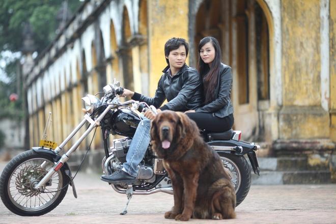 8X Viet thanh dai gia nho nuoi loai cho dat nhat hanh tinh hinh anh 10 4
